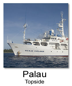 Photos from Palau